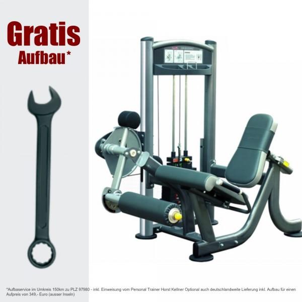 IT9305 Beinstrecker - Leg extension 91 kg - inkl. Aufbau